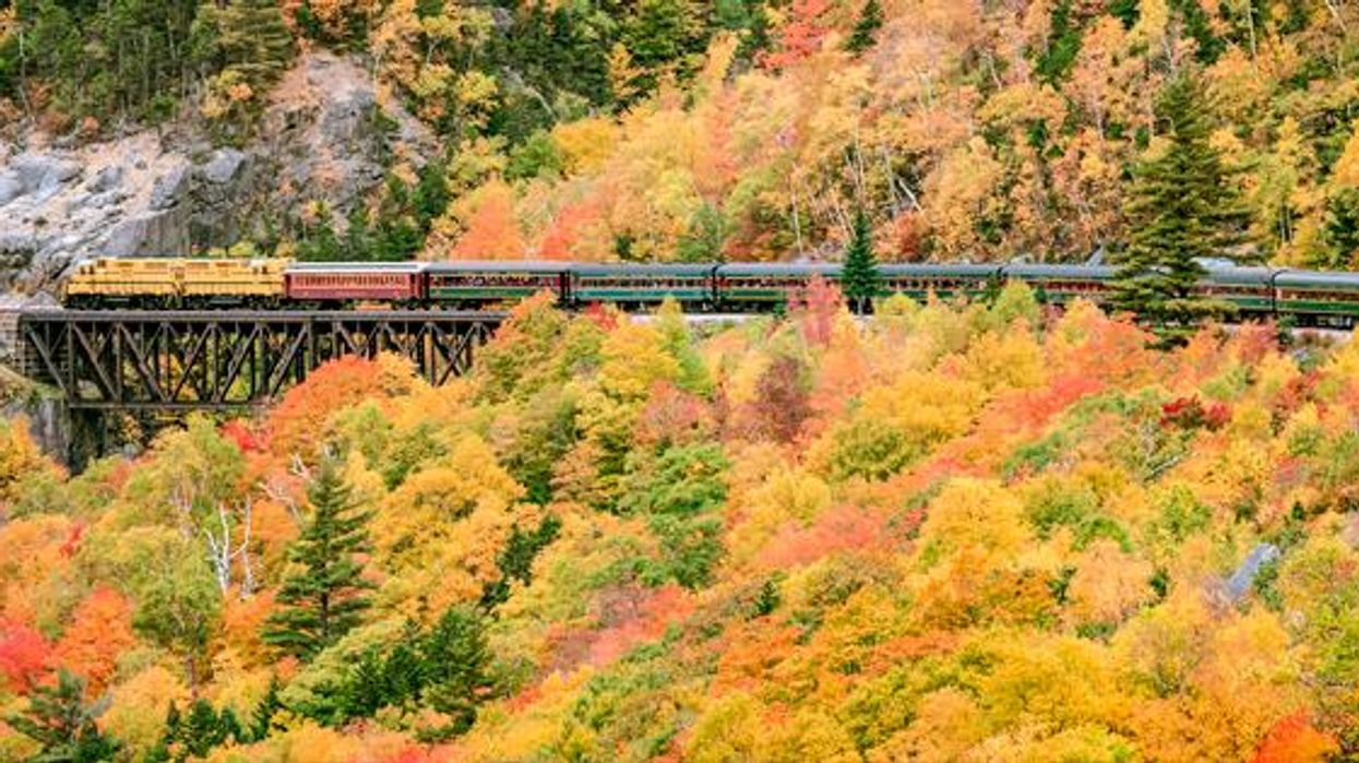 This $15 Train Ride Will Take You Past Stunning Views Of The Fall Colours In Ontario