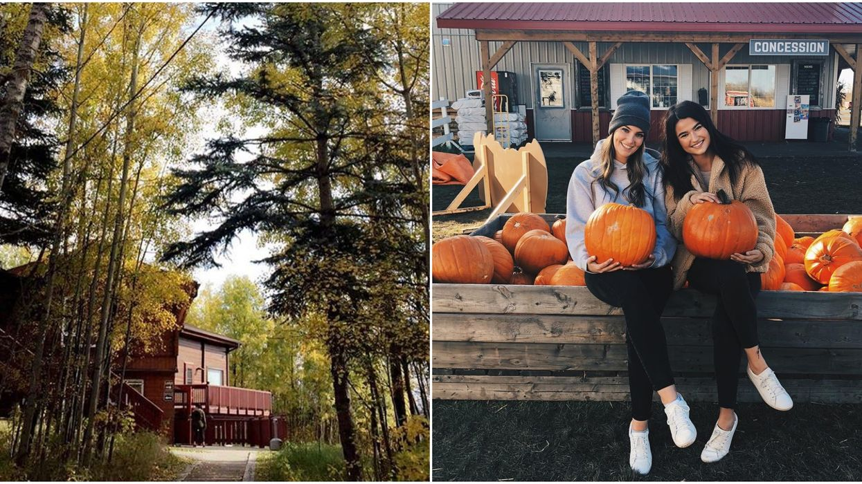 Hidden Gems Right Outside Of Edmonton That Are Totally Worth The Drive