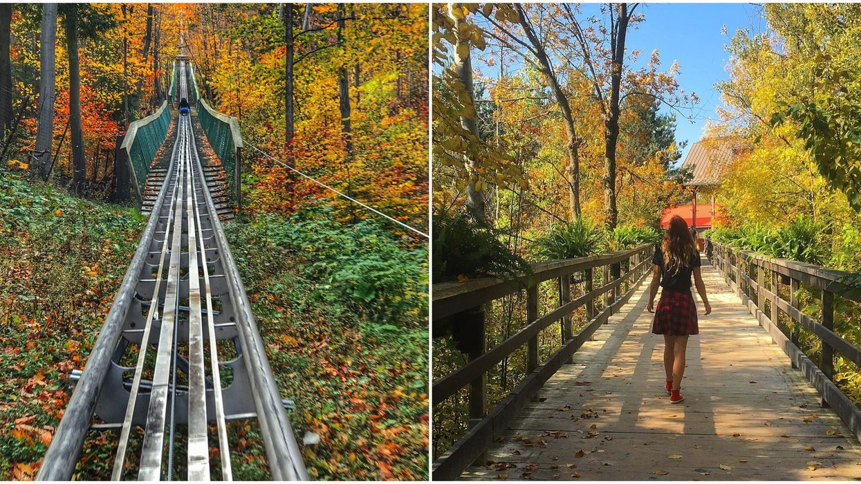 Short And Sweet Road Trips From Toronto That Aren't To Niagara Falls
