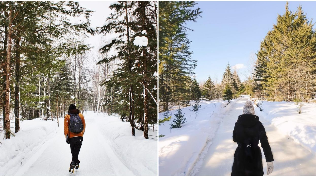 You Can Skate Along A 3-KM Ice Trail In The Forest Near Ontario This Winter