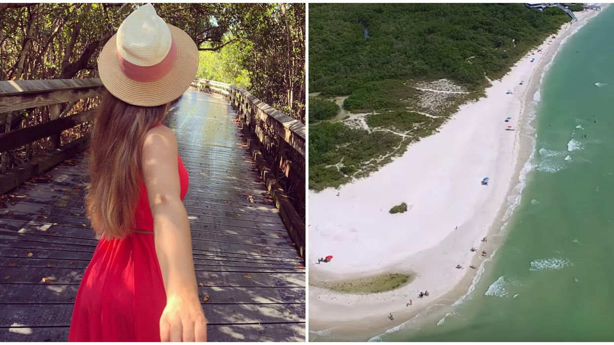 You Have To Walk Through An Enchanted Forest To Find This Hidden Florida Beach