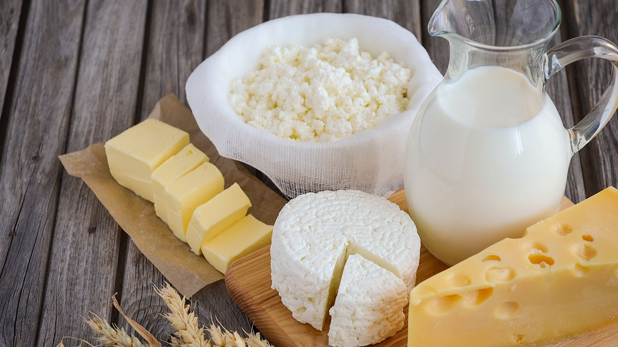 Cheese and milk, dairy