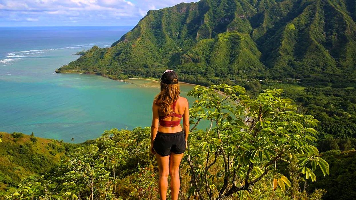 You Can Fly To Hawaii From Calgary Or Edmonton For $357 Round Trip