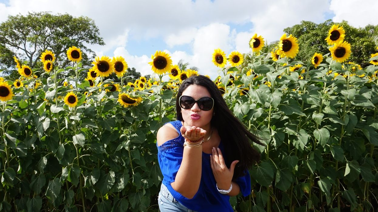 There's A Hidden Sunflower Field In Miami And It's Perfect For Your Instagram Feed