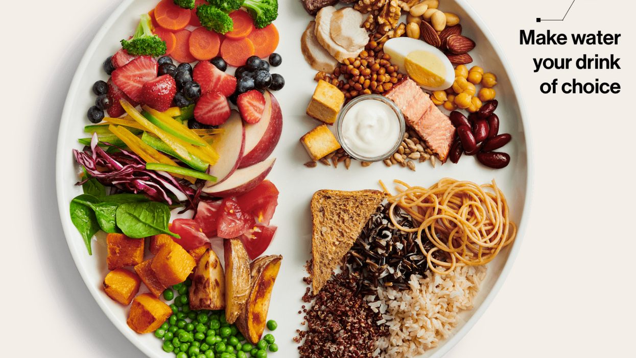 Canada's New 2019 Food Guide Has Officially Been Announced (PHOTO)
