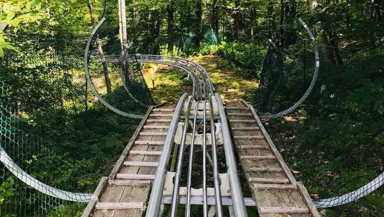 You Can Ride This 1.5 Km Mountain Coaster In Canada This Spring