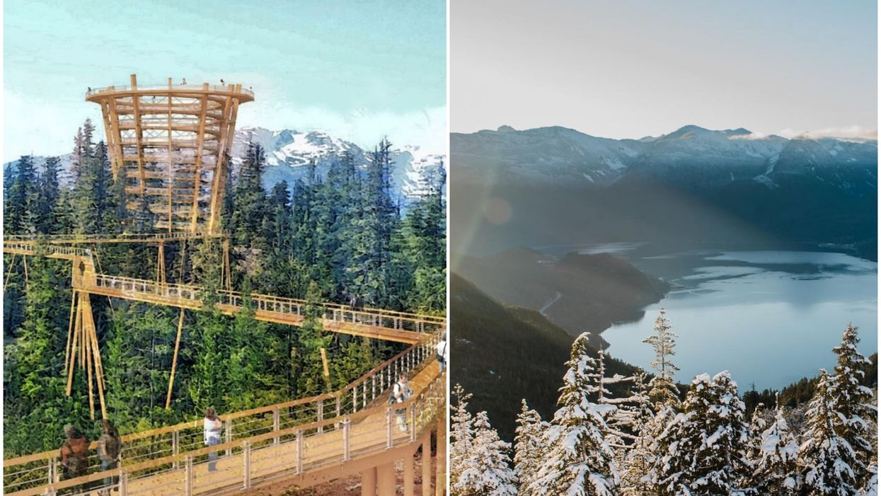 North America's First Sky-High Tree Walk Could Be Coming To Canada Next Year