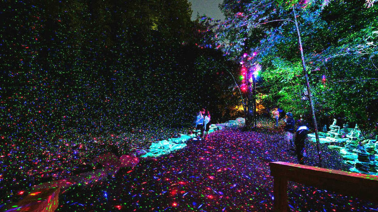 You Can Take A Magical Walk Through A 1.5 Km Forest Trail Of Lights In Whistler This Spring