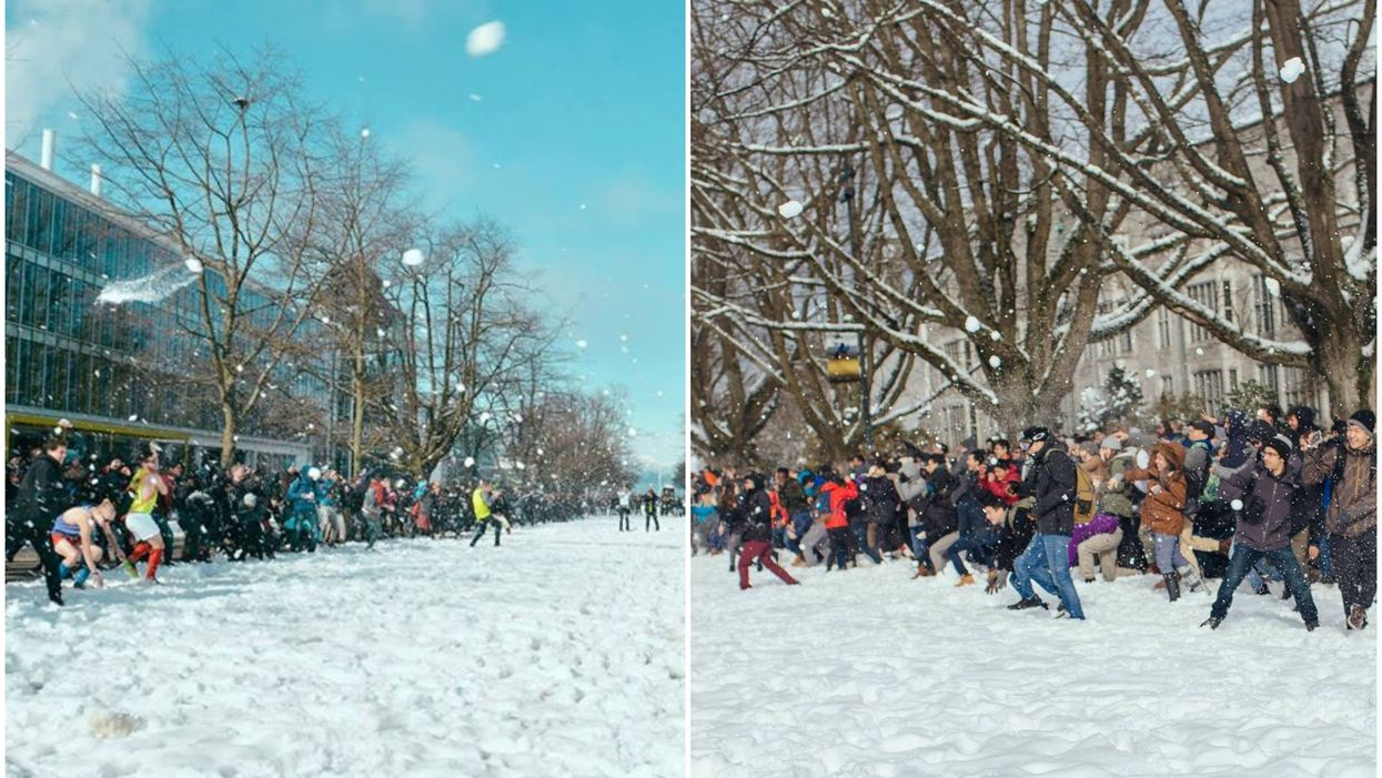 A Canadian University Is Having A Massive Campus-Wide Snowball Fight Today (VIDEOS)