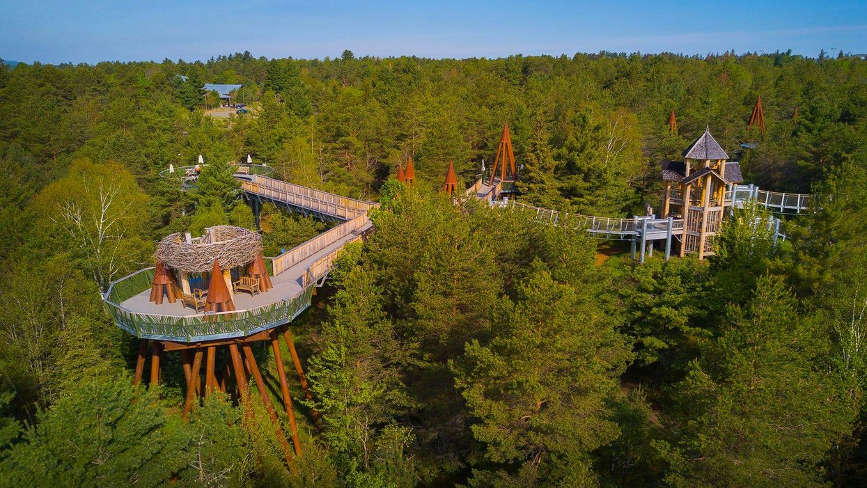 You Can Walk Through This Massive Elevated Treetop Trail Near Ontario This Summer