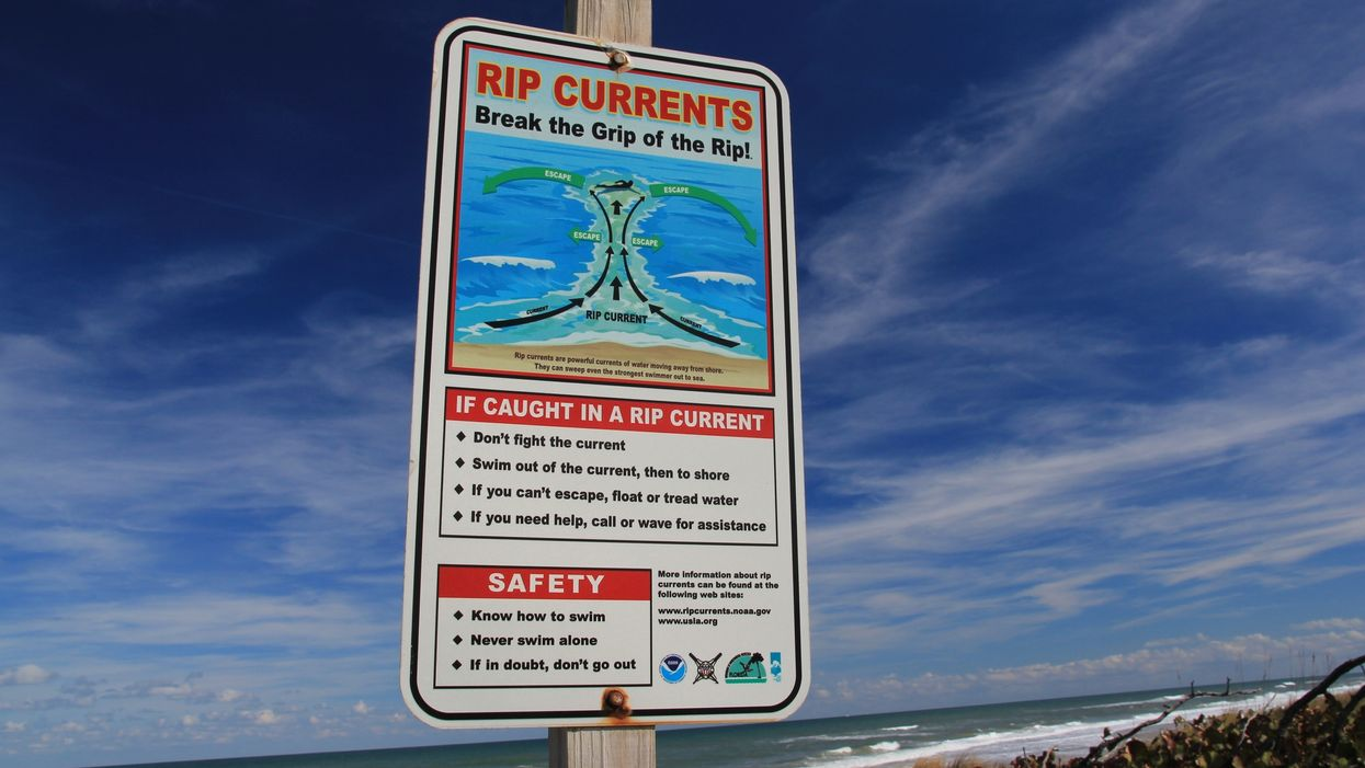 More People Die From Rip Currents Than Shark Attacks In Florida