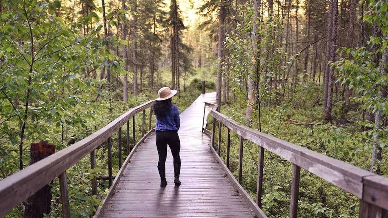 14 Boardwalk Trails In Ontario You Need To Add To Your Bucket List This Summer