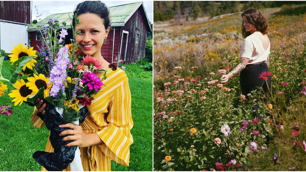 You Can Pick Your Own Flowers At This Adorable Field Near Toronto This Spring