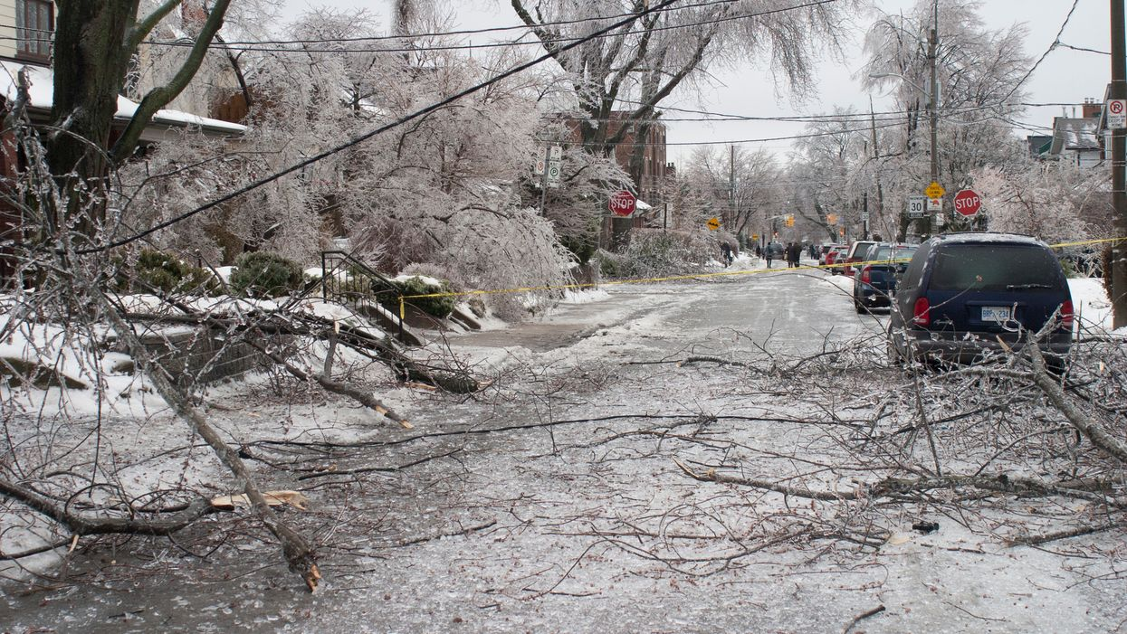 Toronto Will Be Hit With Strong Wind Gusts Up To 94 Km/Hr This Weekend