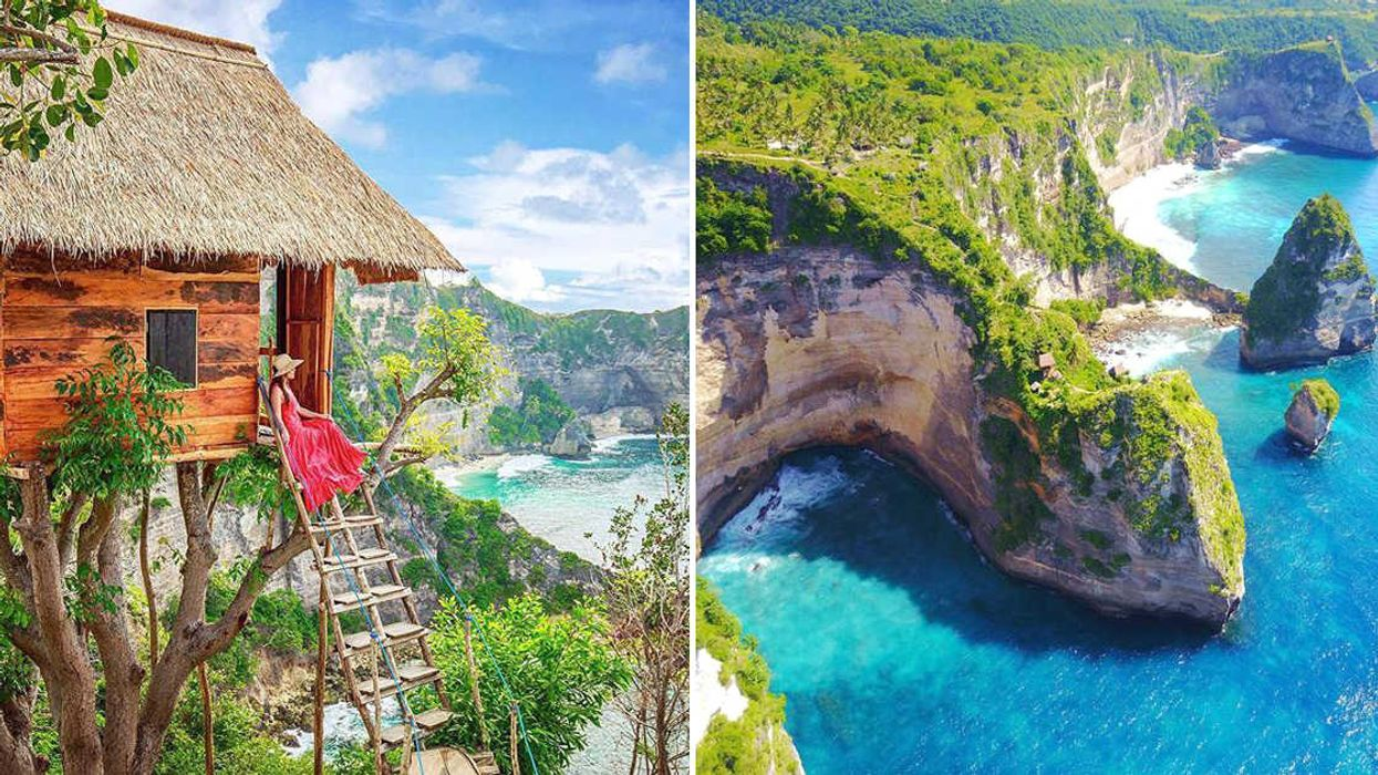 You Can Stay At This Stunning Tree House In Bali For Under $55 A Night