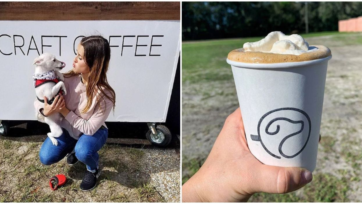 Orlando Is Getting The First Ever Dog Park Coffee Shop