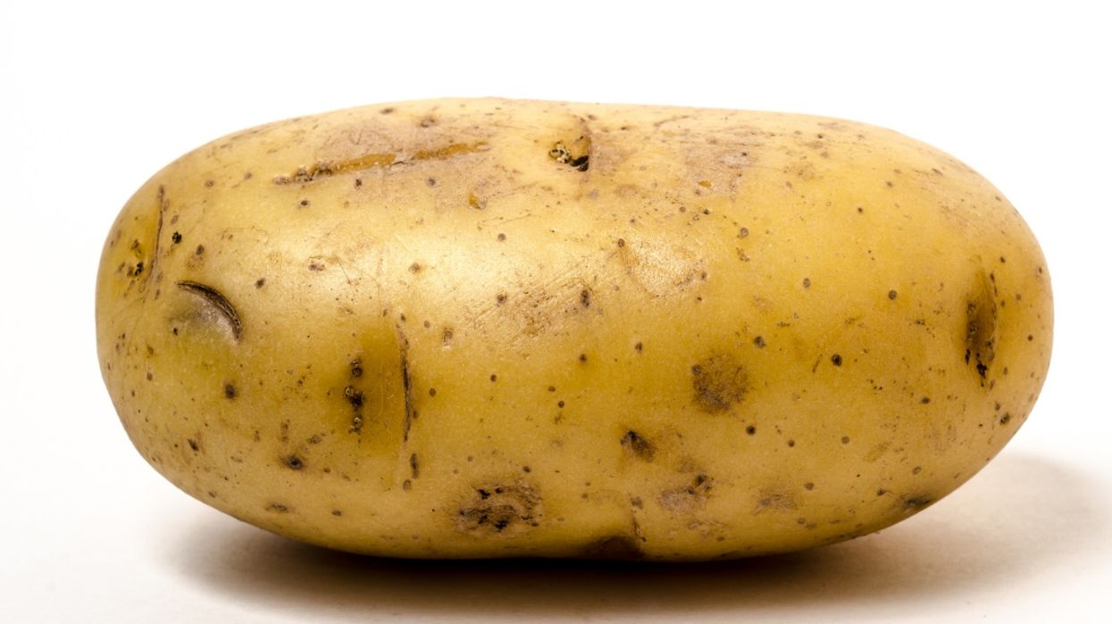 A Lone Potato Was Spotted On The TTC And Toronto Commuters Are Very Amused By It