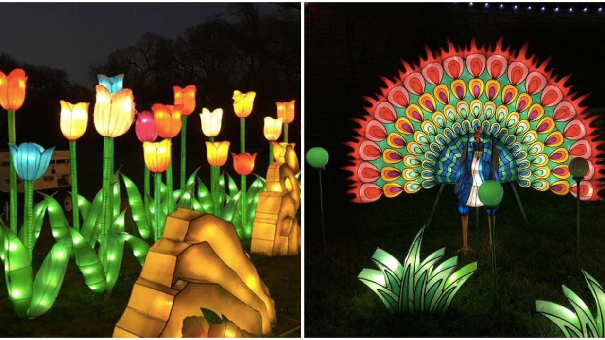 """Forth Worth's 2019 """"Lantern Festival"""" Will Be Lighting Up The Botanical Garden This Spring"""