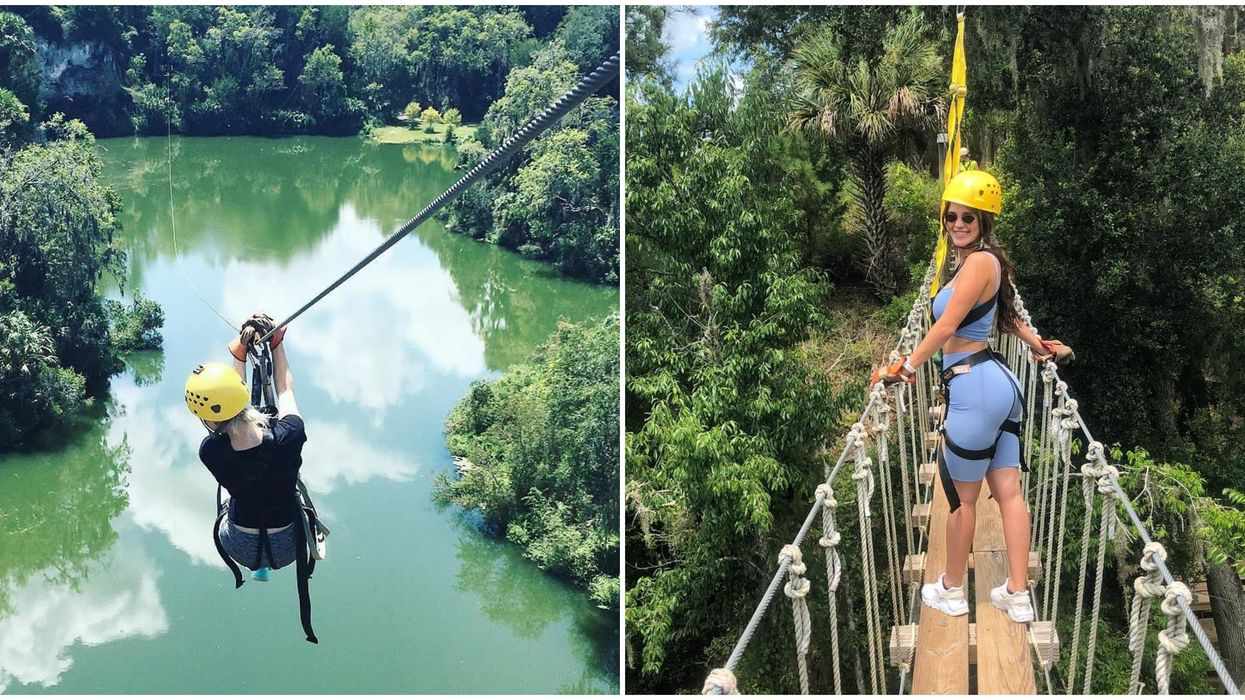 You Can Soar Above The Trees On A Zip Line Through Florida's Most Gorgeous Canyon