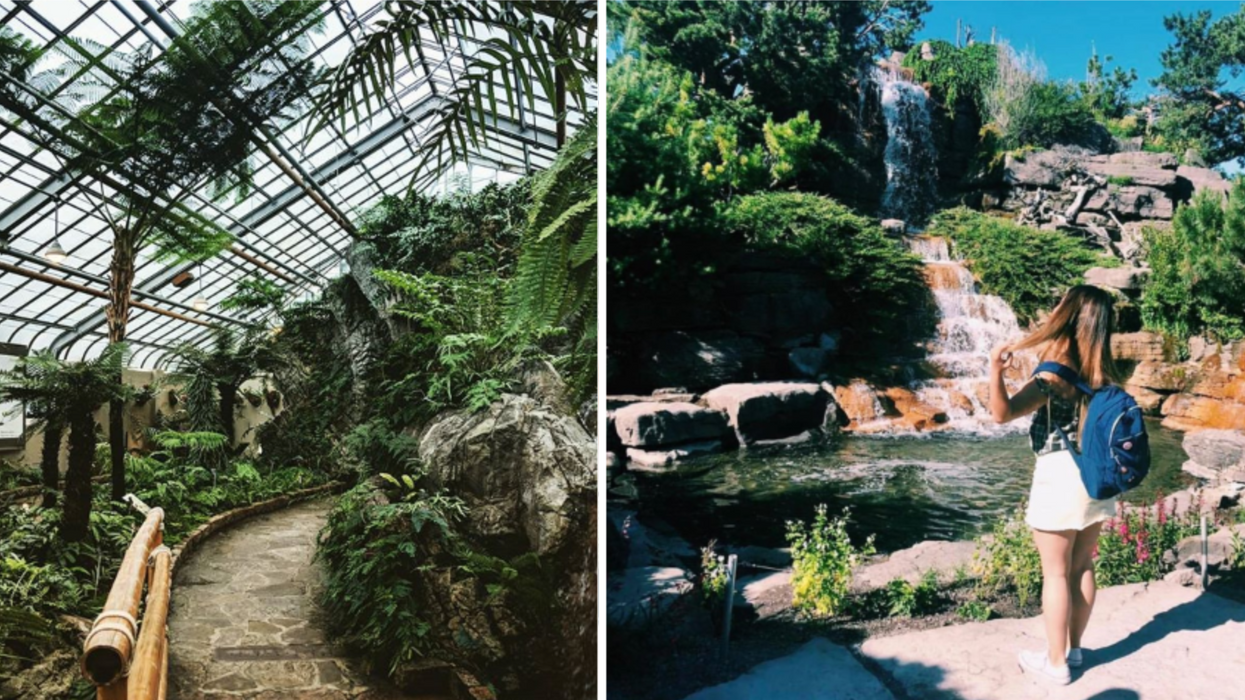 Le Jardin botanique de Montréal sera gratuit pendant toute une journée ce printemps