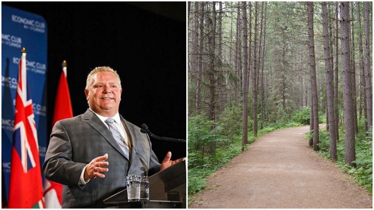 Ontario Lost Billions Of Trees In Recent Years But Doug Ford Just Cut 50 Million From Being Planted