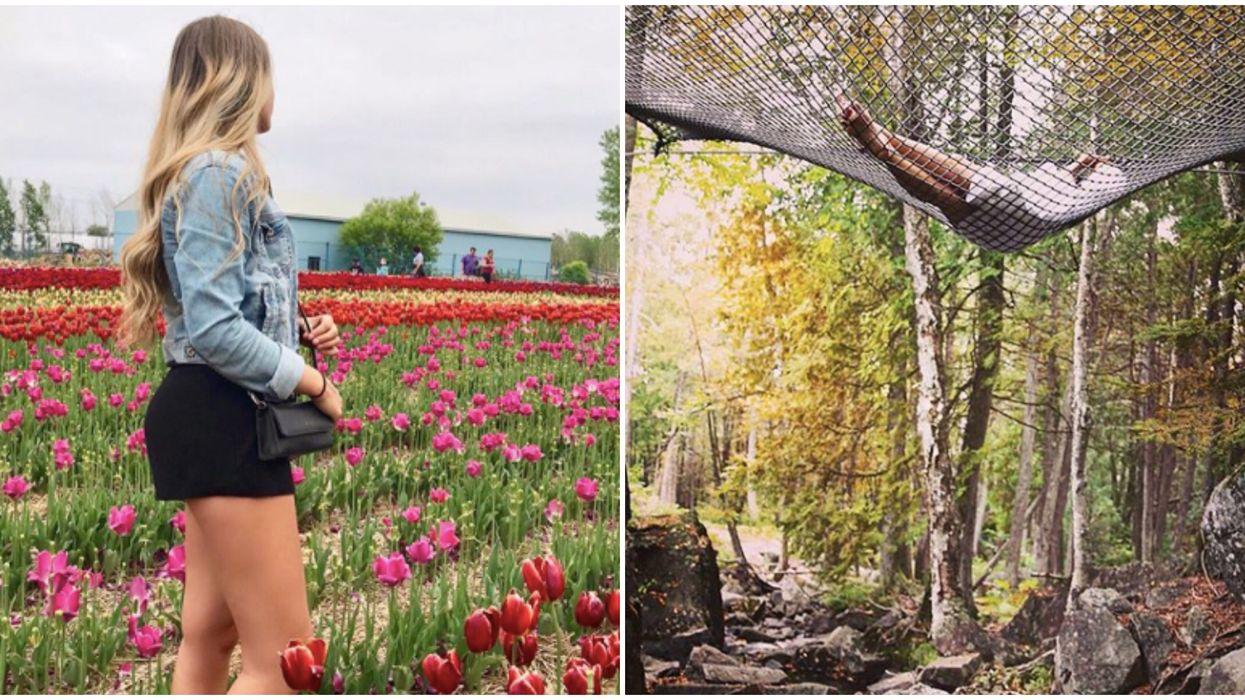 20 activités à faire au Québec ce printemps si t'es jeune, pauvre et à la recherche d'aventure
