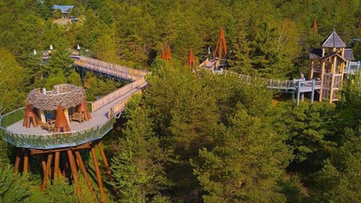 Cet immense sentier dans les arbres est à seulement 2h30 de Montréal et c'est l'activité incontournable de l'été
