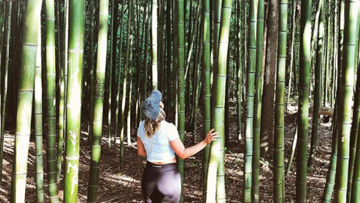 There's A Bamboo Forest Hidden In Georgia And You Can Visit It For Free