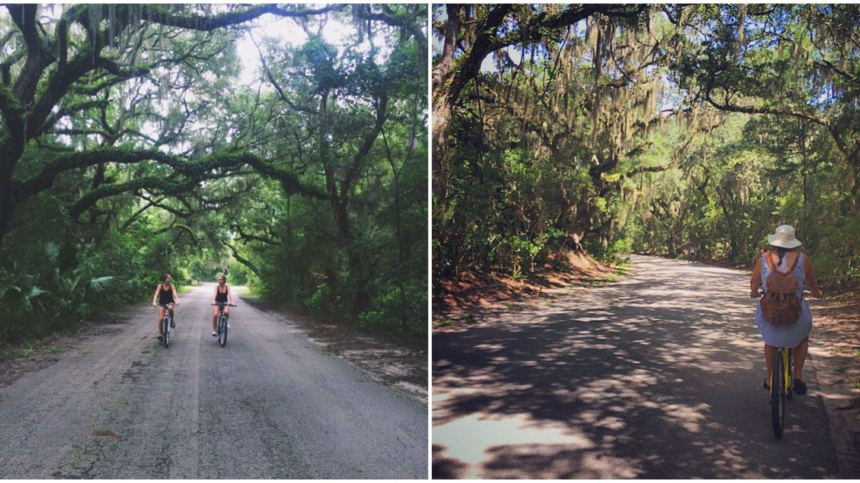 Biking Down This Florida Park Will Take You On A Scenic Adventure Of A Lifetime