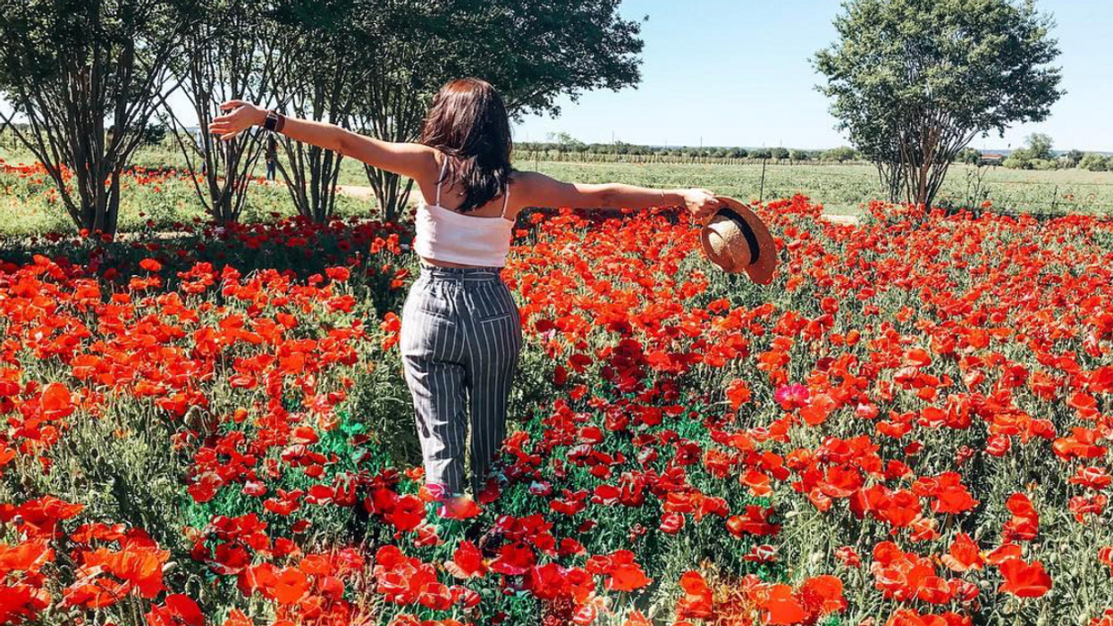 The Biggest Wildflower Farm In The Country Is In Central Texas And It's Free To Visit