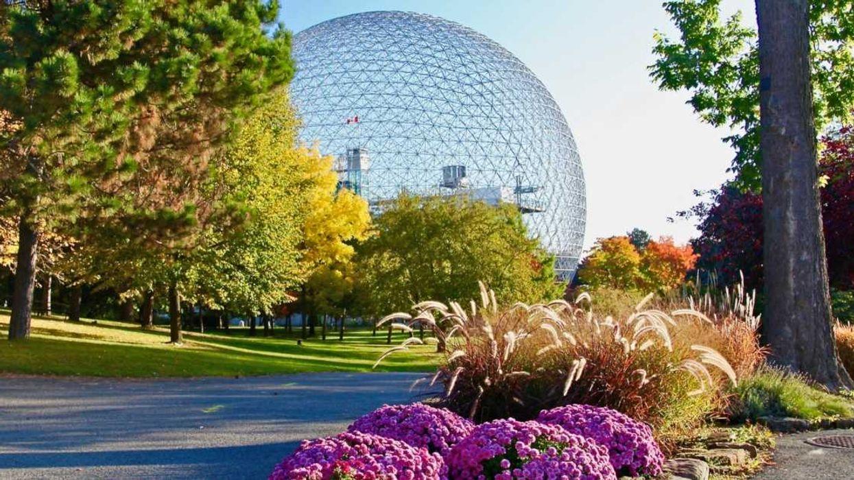 Tu peux aller à la Biosphère de Montréal gratuitement cette semaine