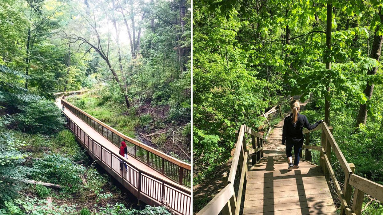 You Need To Visit This 1.3 km Boardwalk Trail That Is A Hidden Oasis In Toronto