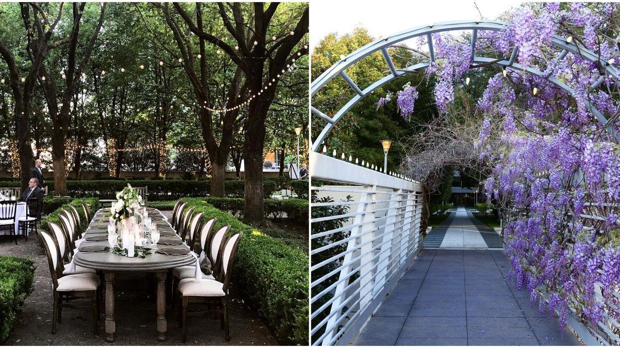 This Dallas Restaurant Has A Beautiful Hidden Garden Within It