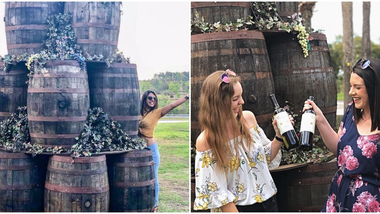 This Winery In Florida Offers FREE Tours And Complimentary Wine Tastings
