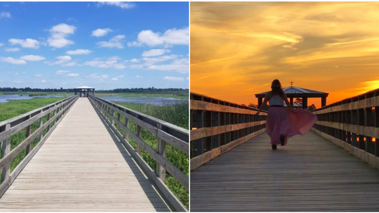 This Beautiful Texas Boardwalk Near Houston Takes You Right Into The Middle Of Wildlife