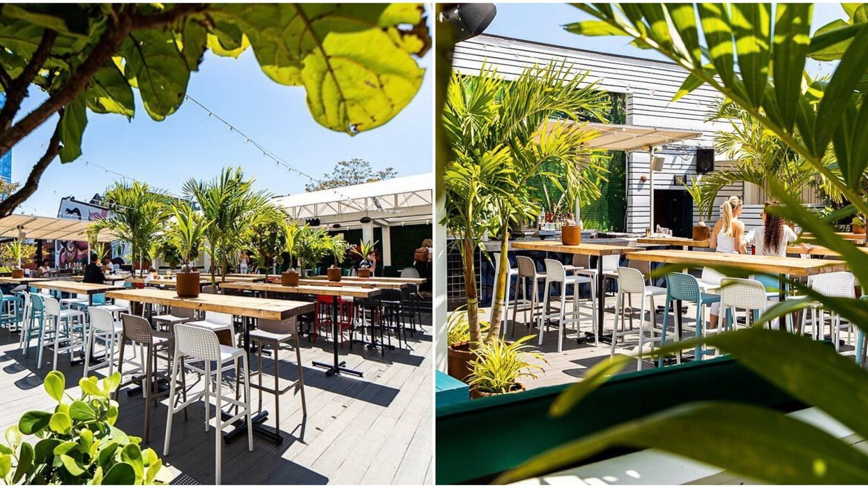 A Brand New Rooftop Patio Just Opened In Toronto And It's A Garden Oasis