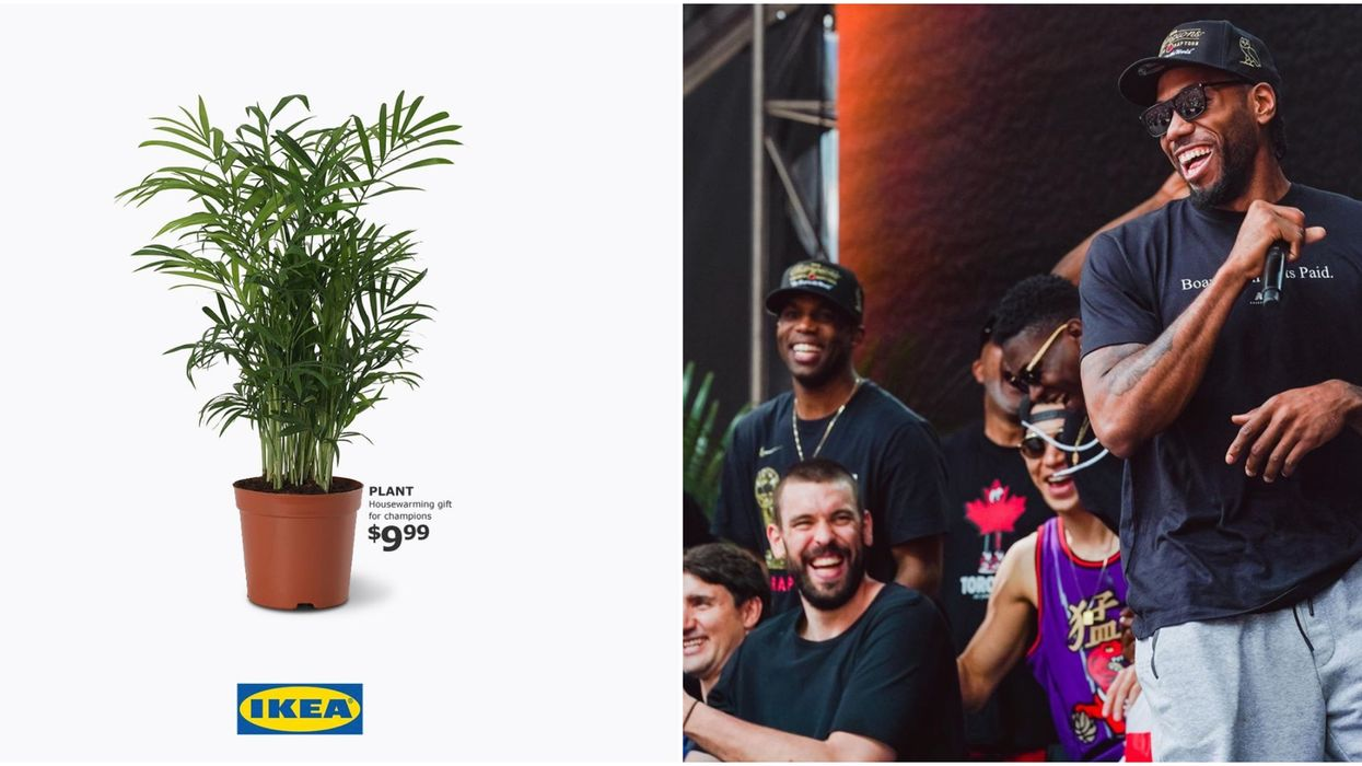 IKEA Is Celebrating The Toronto Raptors Championship With 'Plant Guy' Themed Products