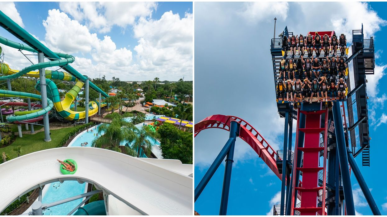 Busch Gardens Tampa Has Brought Back Their Super Cheap Ticket Deal For A Limited Time