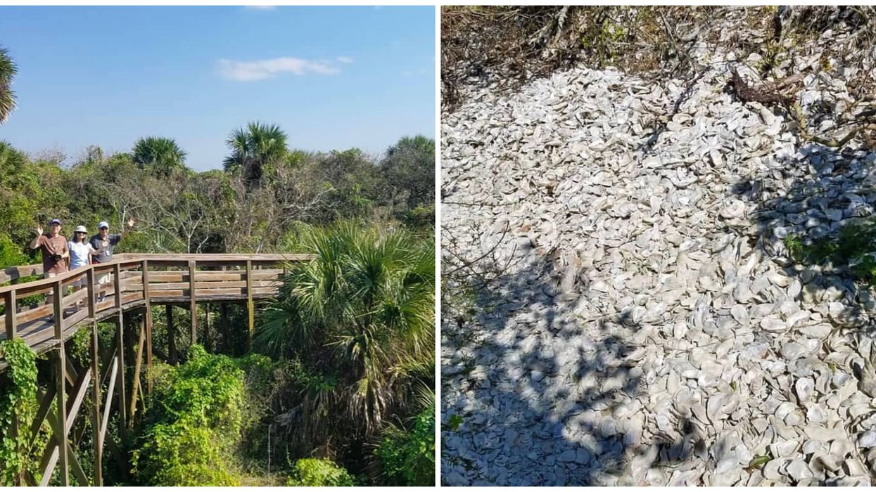 You Get The Best View Of The Ocean On This 50-Foot Oyster Shell Mound In Florida