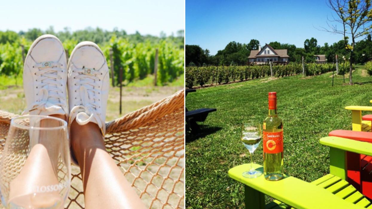 L'ultime tournée de 6 vignobles à faire en Ontario cet été pour un weekend complètement magique