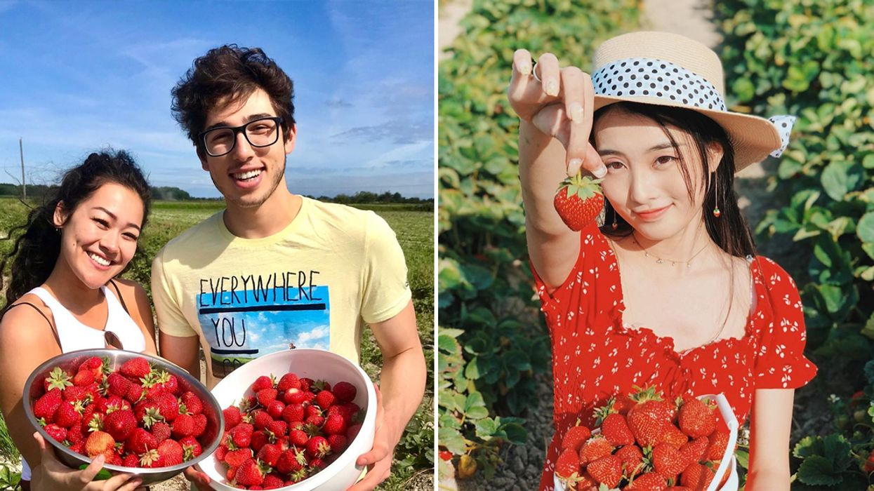 You Can Go Strawberry Picking At This Super Cute Farm Near Vancouver This Summer