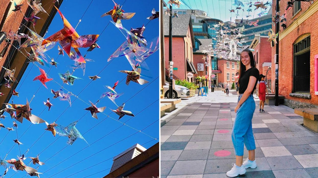 You Have To See This Instagrammable Street Near Ottawa That Is Covered With 700 Pinwheels