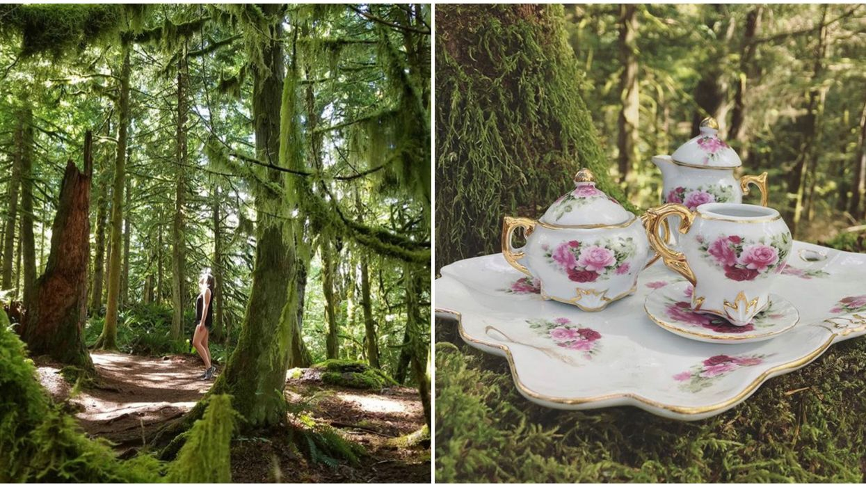Stroll Through A Magical 5 Km Forest Trail Filled With Teapots In BC This Summer