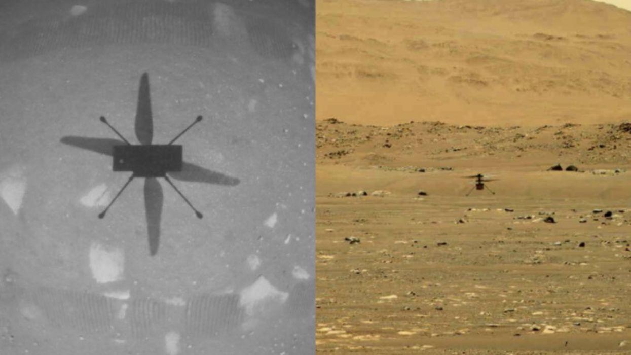 NASA's Mars Helicopter Took Flight & Made History This Morning (PHOTOS)
