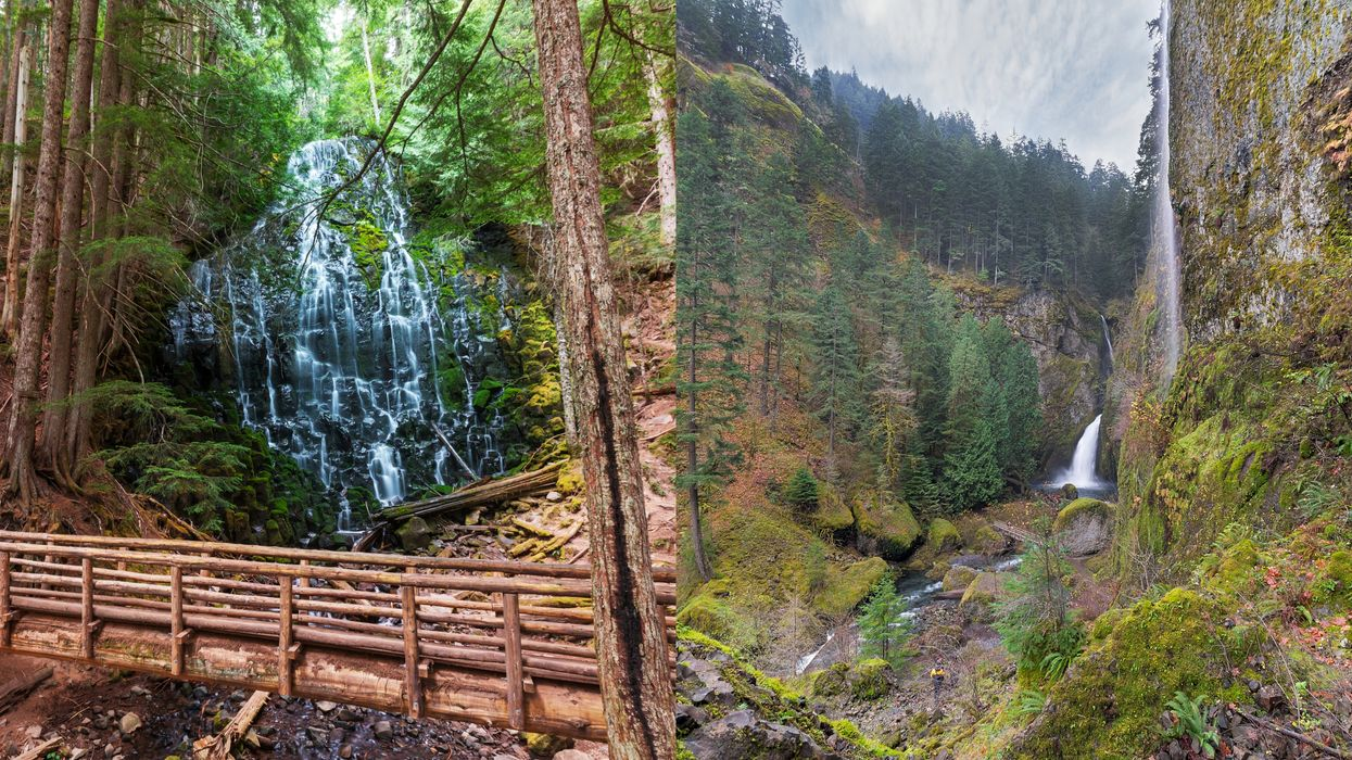 7 Gorgeous Hikes Near Portland That Make For The Perfect Spring Daytrip Adventure