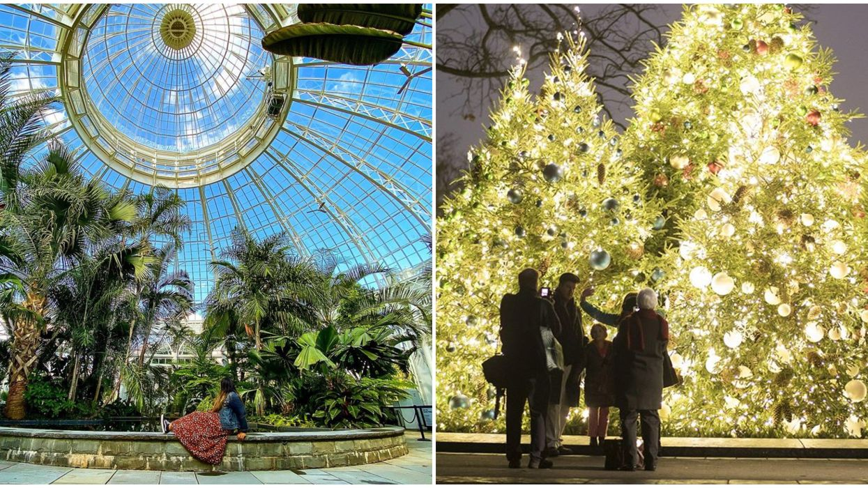 You Can Walk Through Thousands Of Twinkling Lights At NYC's Botanical Garden This Month
