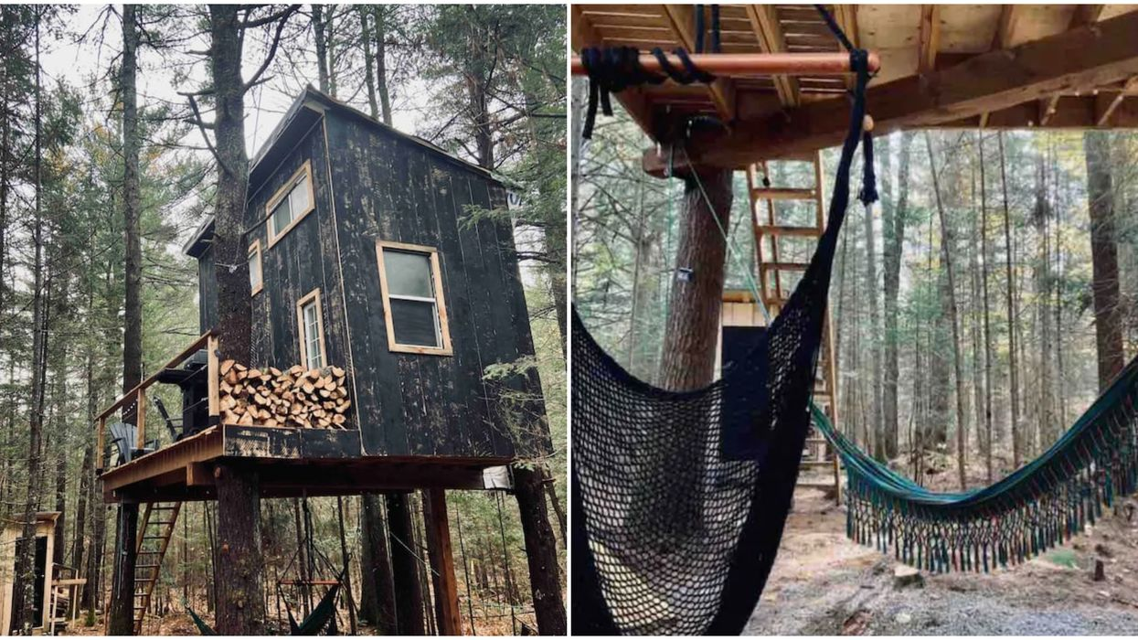 You Can Wake Up In The Sky At This Ridiculously Cozy Treehouse Airbnb Near Toronto