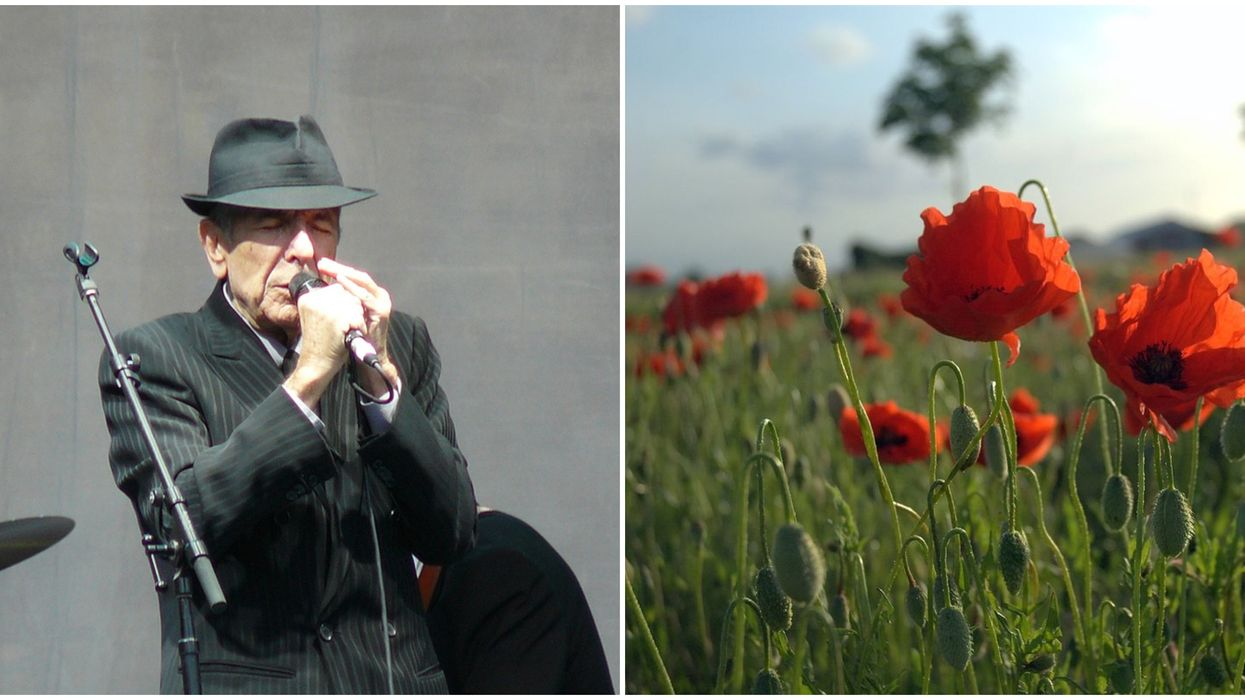 Leonard Cohen's Haunting Version Of 'In Flanders Fields' Is Going Viral On Remembrance Day