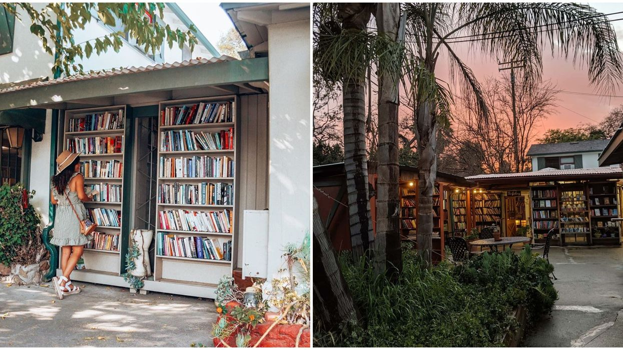 The World's Largest Outdoor Bookstore Is In The US & It's A Literary Oasis (PHOTOS)