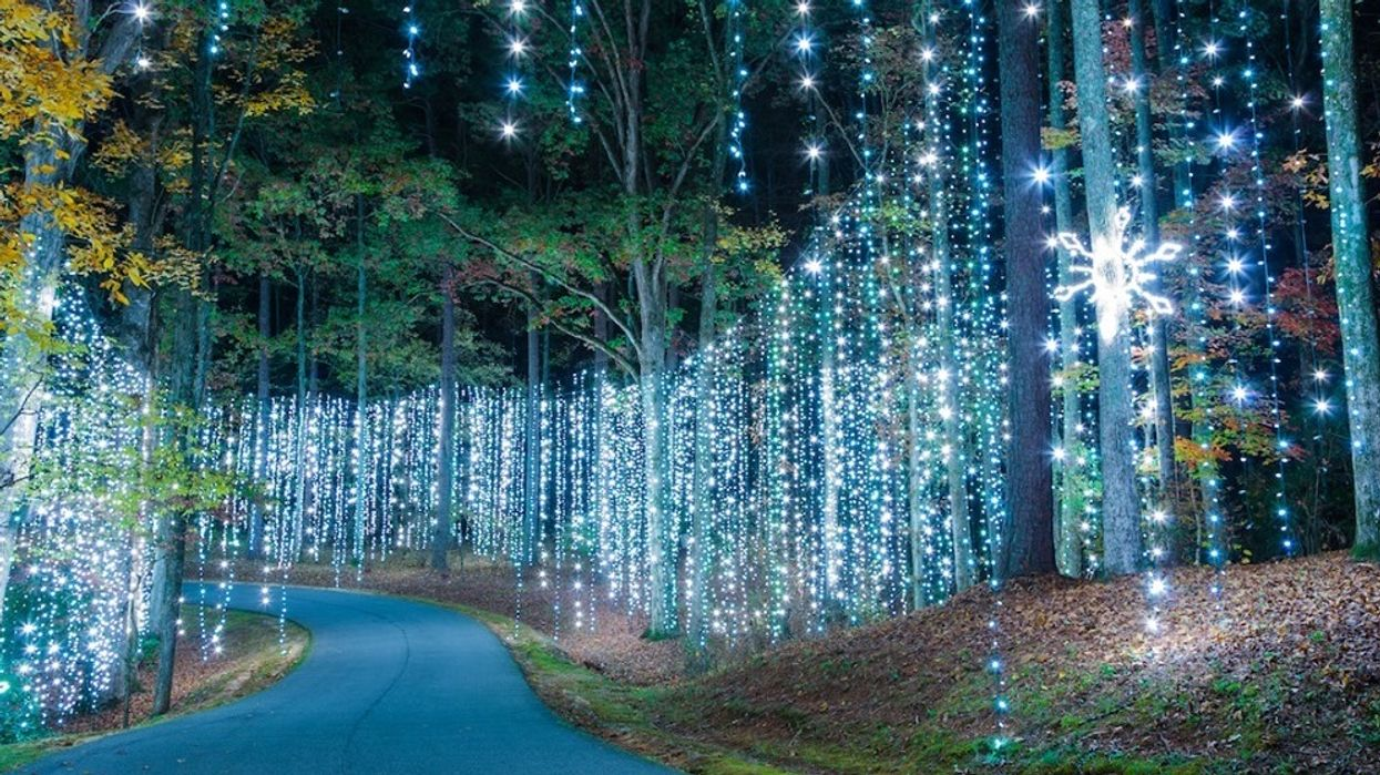 Callaway Gardens Fantasy In Lights Drive Thru Light Show Georgia Atlanta